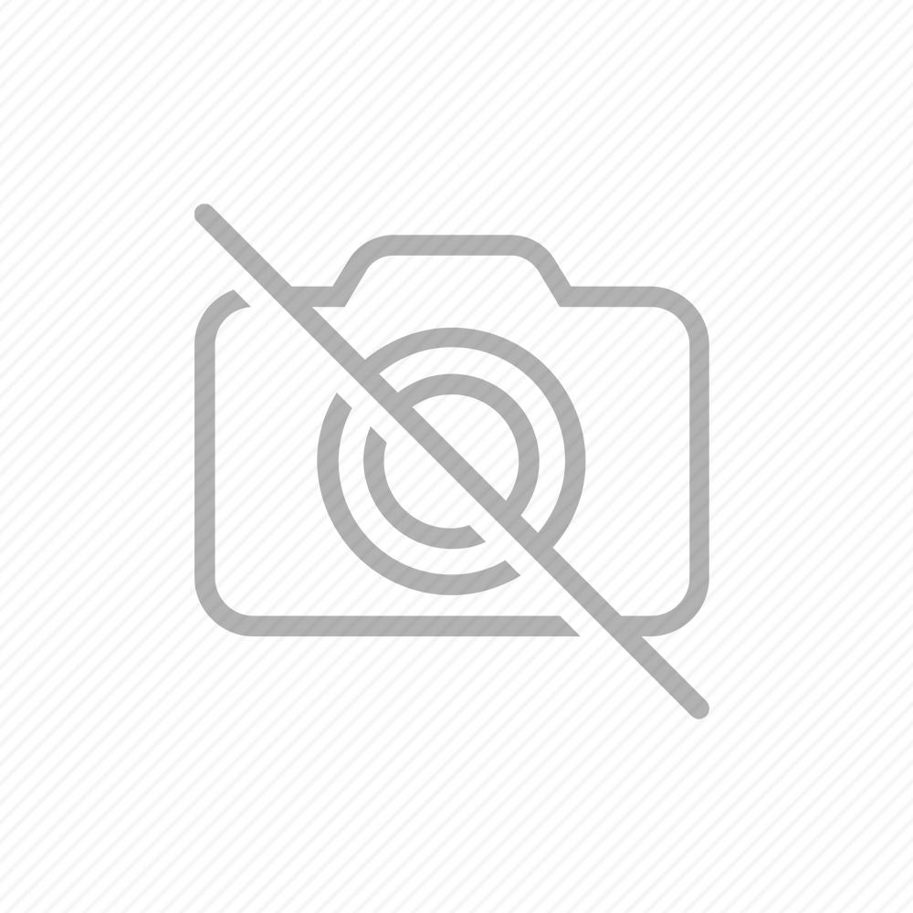 ΖΥΜΟΜΥΚΗΤΑΣ FERVENS TWENTY 0,5 KG